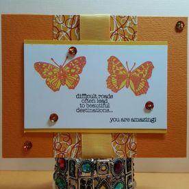 bmbutterflies