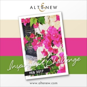 feb2017_altenewchallenge_aga